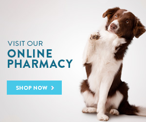 Online Store and Pharmacy